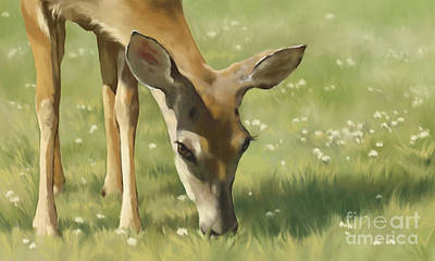 Wall Art - Painting - Spring Buck by Laurie Musser