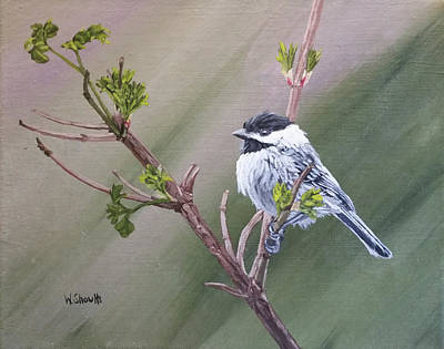 Painting - Spring Chickadee by Wendy Shoults
