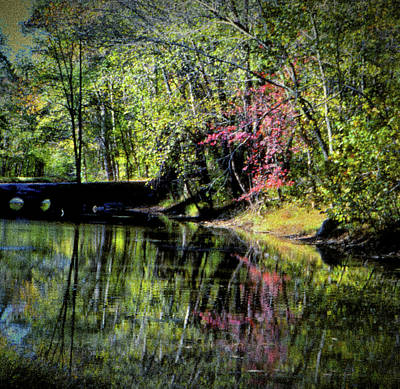 Photograph - Spring Colors by Samuel M Purvis III