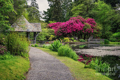 Photograph - Spring Colours by Adrian Evans