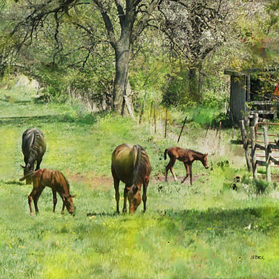 Digital Art - Spring Colts - Square Version by John Beck