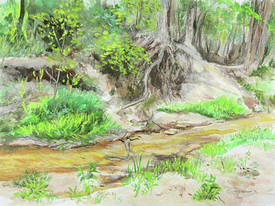 Painting - Spring Creek During Texas Drought 01 by TD Wilson