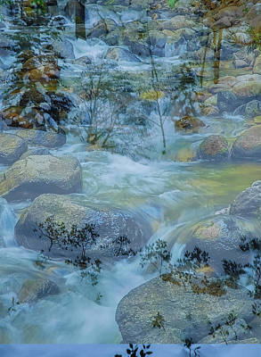 Photograph - Spring Creek by Nancy Marie Ricketts