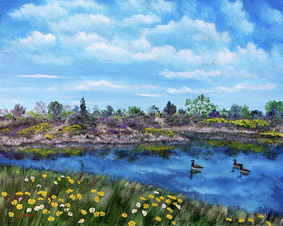 Spring Daisies At Los Gatos Lake Art Print by Laura Iverson