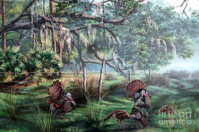 Spring Dance-osceola Turkeys Art Print by Daniel Butler