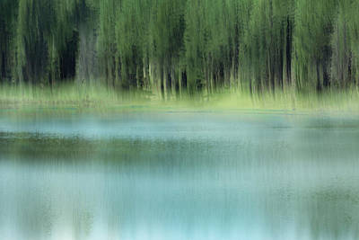 Photograph - Spring Dreaming by Deborah Hughes