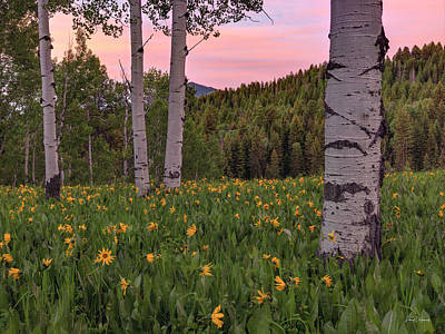 Photograph - Spring Evening by Leland D Howard