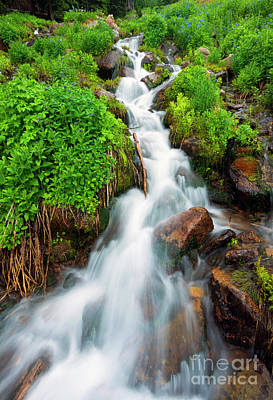 Photograph - Spring Falls by Mike Dawson