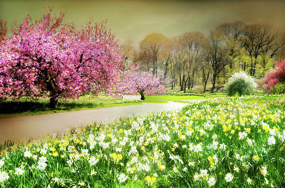 Photograph - Spring Fantasy by Diana Angstadt