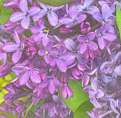 Photograph - Spring Fantasy - Lilac Purple - Variation by Miriam Danar