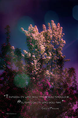Photograph - Spring Fantasy by Mick Anderson