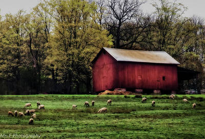 Photograph - Spring Farm by Richard Engelbrecht