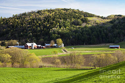Photograph - Spring Farmland by Alan L Graham