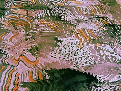 Digital Art - Spring Farms by Nancy Kane Chapman