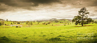 Landscapes Royalty-Free and Rights-Managed Images - Spring field in Springfield by Jorgo Photography - Wall Art Gallery