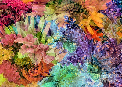 Photograph - Spring Floral Composite  by Janice Drew