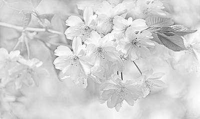 Art Print featuring the photograph Spring Flower Blossoms Soft Gray by Jennie Marie Schell