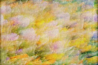 Photograph - Spring Flowers Abstract by Teresa Wilson