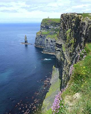 Photograph - Spring Flowers At Cliffs Of Moher by Barbie Corbett-Newmin