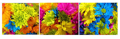 Spring Flowers Collage Art Print by Tina M Wenger