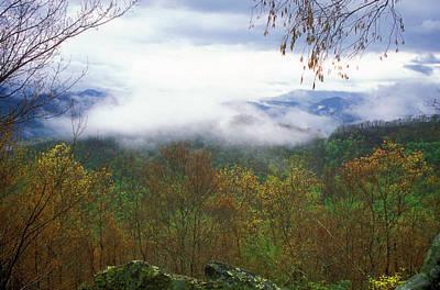 Photograph - Spring Fog Joyce Kilmer Forest by John Burk