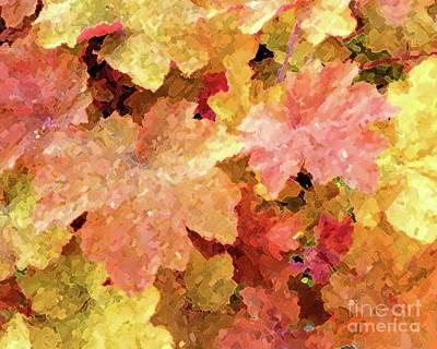 Photograph - Spring Foliage by Barbie Corbett-Newmin