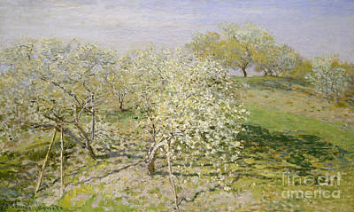 Fruit Tree Art Painting - Spring, Fruit Trees In Bloom, 1873 by Claude Monet