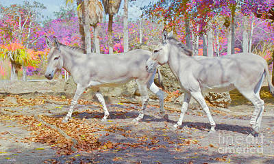 Painting - Spring Gallop Edition 3 by Judy Kay