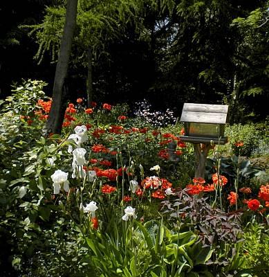 Painting - Spring Garden by Renate Nadi Wesley