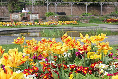 Photograph - Spring Garden by Vicki Spindler
