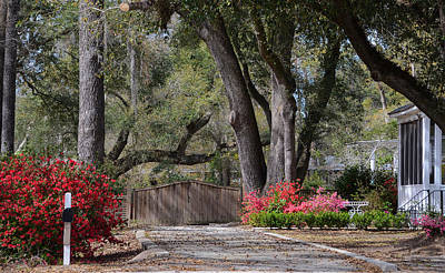 Photograph - Spring Gate by Linda Brown