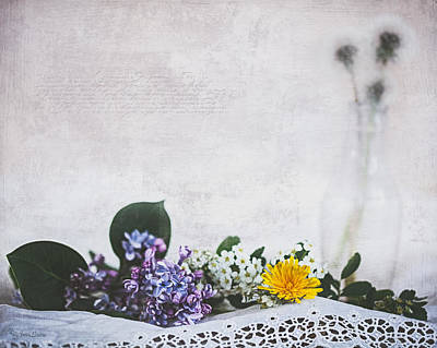 Photograph - Spring Gathering by Anna Louise