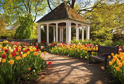 Photograph - Spring Gazebo by Mark Mille