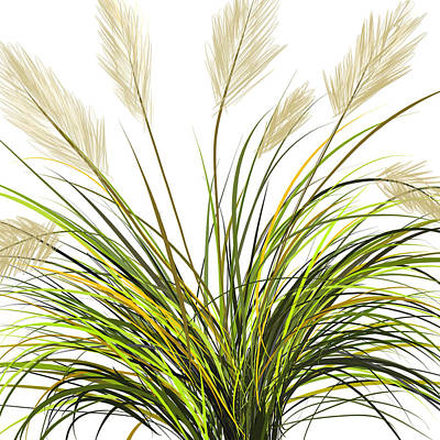 Spring Grass Art Print by Lourry Legarde