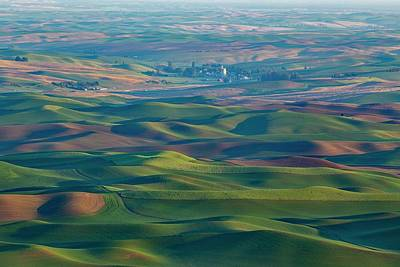 Photograph - Spring Green On The Palouse by Lynn Hopwood