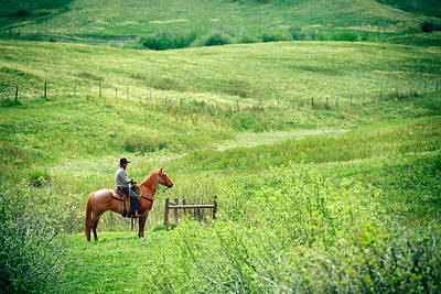 Ranching Photograph - Spring Green by Todd Klassy