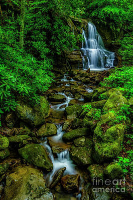 Photograph - Spring Green Waterfall And Rhododendron by Thomas R Fletcher