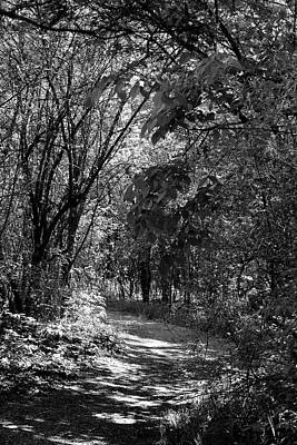 Photograph - Spring Hiking Trail 2 Bw 052318 by Mary Bedy