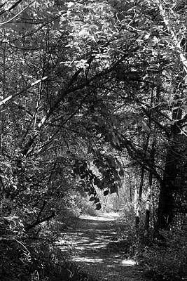 Photograph - Spring Hiking Trail 3 Bw 052318 by Mary Bedy