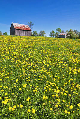 Photograph - Spring Hilltop Barns by Alan L Graham
