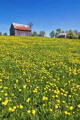 Photograph - Spring Hilltop Barns by Alan L Graham