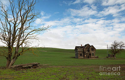 Photograph - Spring Homestead by Idaho Scenic Images Linda Lantzy