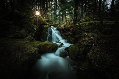 Photograph - Spring In Alaska by Chris Multop
