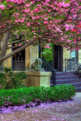 Photograph - Spring In Boston - Back Bay Fens by Joann Vitali