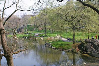 Photograph - Spring In Central Park by Living Color Photography Lorraine Lynch