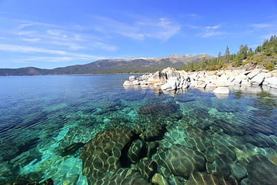 Photograph - Spring In Lake Tahoe by Sean Sarsfield