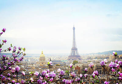 Paris Skyline Royalty-Free and Rights-Managed Images - Spring in Paris by Anastasy Yarmolovich
