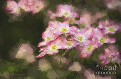 Photograph - Spring In Pink by Linda Blair