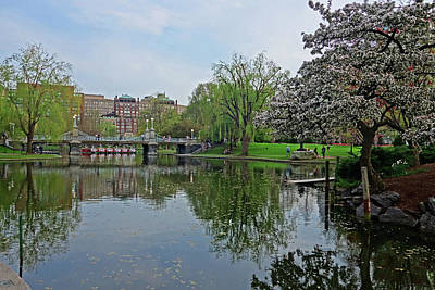 Photograph - Spring In The Boston Public Garden Boston Ma by Toby McGuire