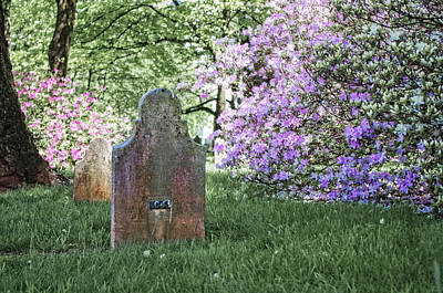 Photograph - Spring In The Cemetery by Sharon Popek